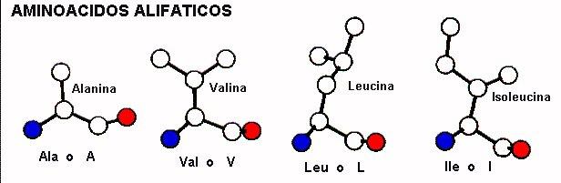 Principios De Estructura De Proteínas